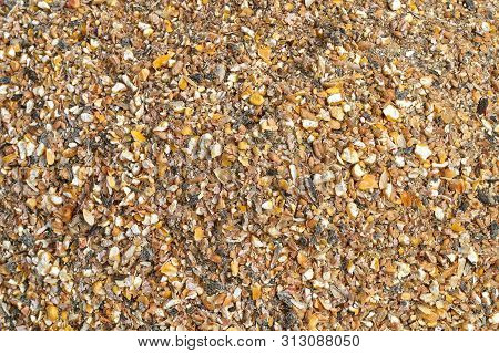 Background Texture Of Crushed Seed And Grain Mix For Livestock And Bird Feed As A Dietary Supplement