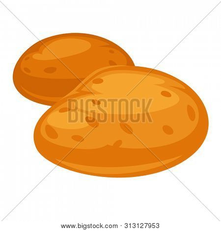 Russet whole and clean potatoes isolated on white.  illustration in flat style of two unpeeled and ripe potato plants that grow on fields and backyards. Edible ingredients for cooking.