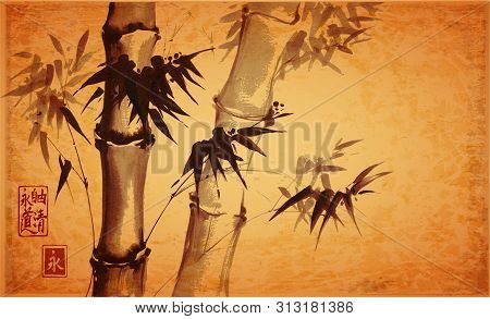 Bamboo Trees On Vintage Background. Traditional Japanese Ink Wash Painting Sumi-e. Hieroglyphs - Ete