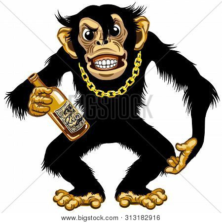Cartoon Chimpanzee Great Ape With Golden Chain On The Neck And Holding Empty Bottle Of Rum. Aggressi