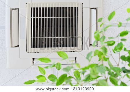 Ceiling Air Conditioner In Modern Office Or At Home With Green Ficus Plant Leaves An Idea Of Clean A