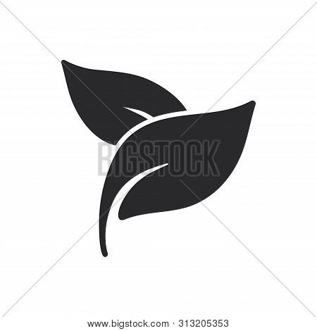 Leaves Icon Isolated On White Background. Leaves Icon In Trendy Design Style For Web Site And Mobile