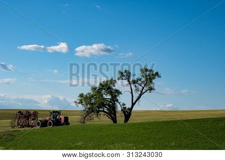 Abandoned Tractor And Farming Equipment In An Open Field Near A Large Tree In The Palouse Region Of