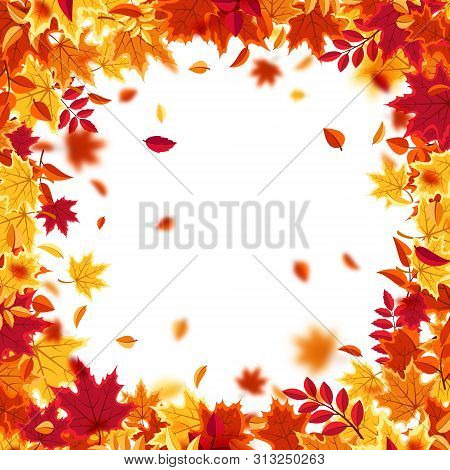 Autumn Falling Leaves. Nature Background With Red, Orange, Yellow Foliage. Flying Leaf. Season Sale.