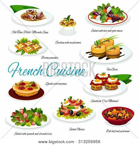 French Cuisine Meal Of Meat And Vegetable Dishes. Vector Salads With Cheese, Olives, Spinach And Tun