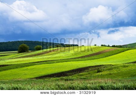 Background With Green Field And Blue Clouds
