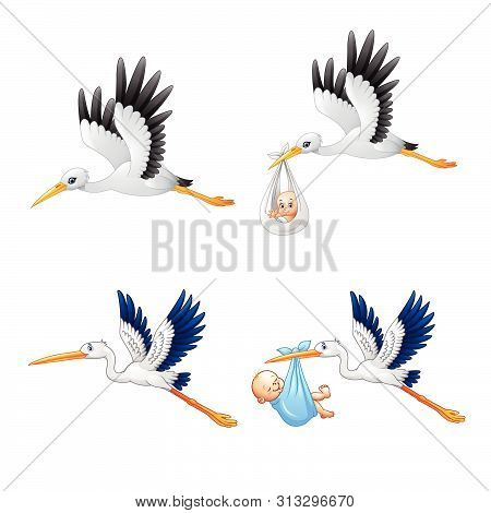 Cartoon Stork With Baby Collections On White Background