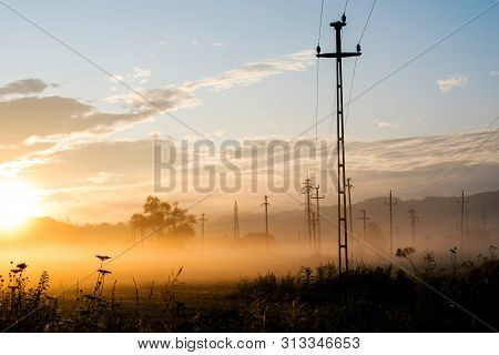 Sunrise In A Field With Lots Of Vegetation, Trees And Electricity Poles. Fog At Ground Level. It See