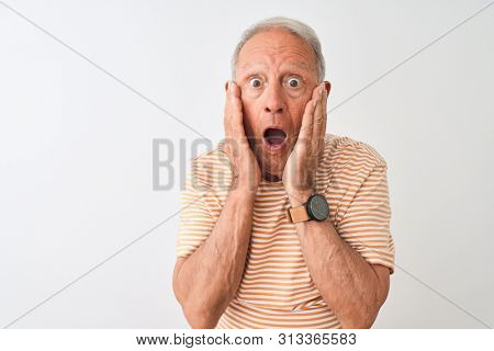 Senior grey-haired man wearing striped t-shirt standing over isolated white background afraid and shocked, surprise and amazed expression with hands on face