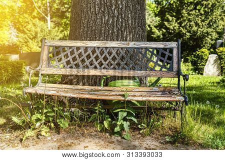 Old Wood Bench In A Park With Green Watering Can