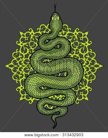 Coiled Snake Over Floral Mandala Detailed Illustration. Green Tribal Serpent Isolated Over Dark Back