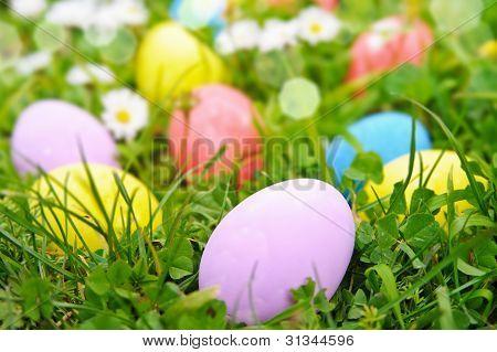 Easter Eggs On The Grass Flower