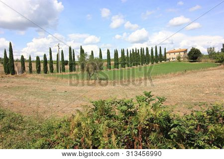 Tuscany - Typical View Of The Tuscan Countryside
