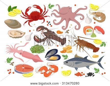 Seafood Big Collection Of Vector Illustrations In Flat Design Isolated On White Background. Vector I