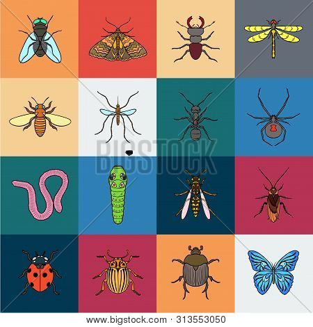 Different Kinds Of Insects Cartoon Icons In Set Collection For Design. Insect Arthropod Bitmap Symbo