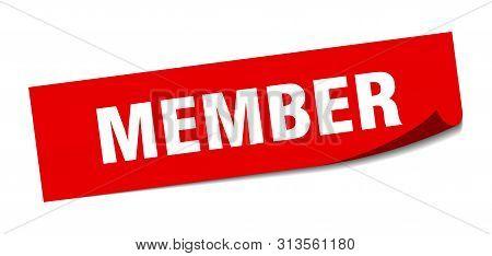 Member Sticker. Member Square Isolated Sign. Member