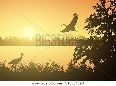 Realistic Illustration Of Wetland Landscape With River Or Lake, Water Surface And Birds. Stork Flyin