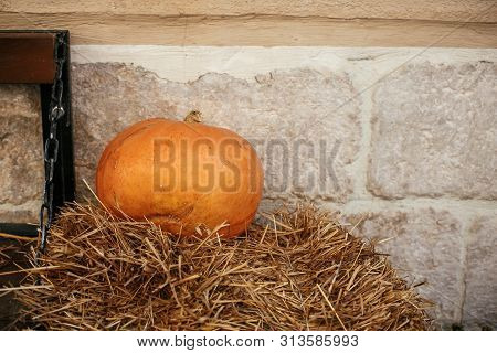 Halloween Street Decor. Pumpkin On Hay In City Street, Holiday Decorations Store Fronts And Building