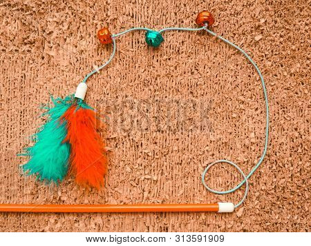 Cat Toys On Cat Scratcher Background. Pet Care Concept Top View