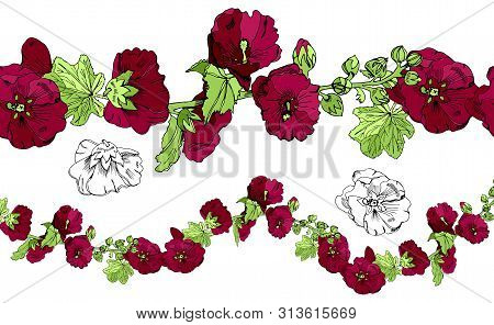 Collection With Endless Brush,  Bouquet And Single Flowers Of Burgundy Mallow And Green Leaves. Hand