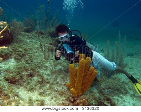 Underwater Vidiographer Shooting A Tube Sponge