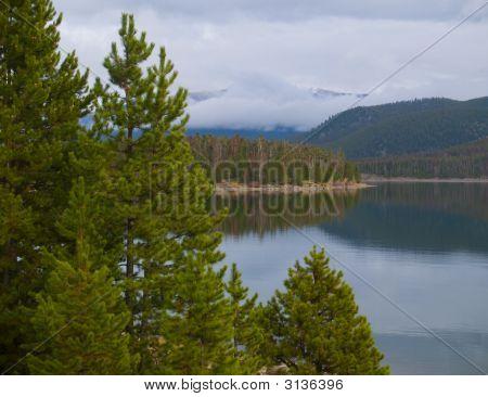 Evergreens, Fog, And Still Lake