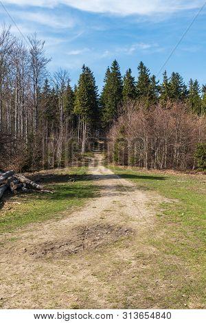 Springtime Moravskoslezske Beskydy Mountains Above Moravka Village In Czech Republic With Forest, Tr
