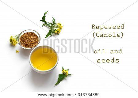Canola (rapeseed) Oil