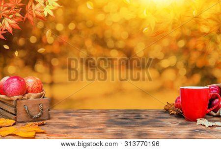 Autumn Season With Fruit And Vegetable. Fall Harvest Cornucopia.