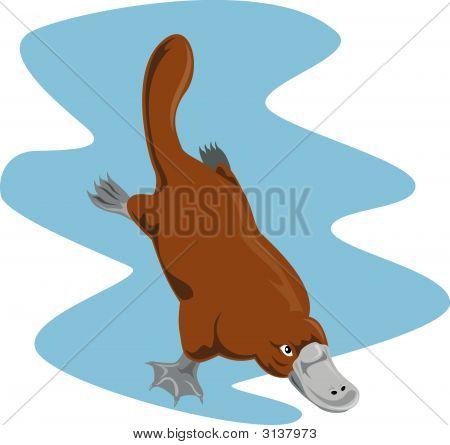 Platypus