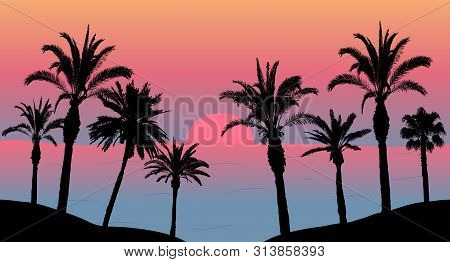Sunset In The Sea, Silhouettes Of Palm Trees On The Beach. Vector Illustration.