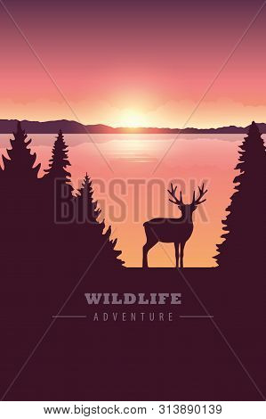Wildlife Adventure Elk In The Wilderness By The Lake At Sunset Vector Illustration Eps10