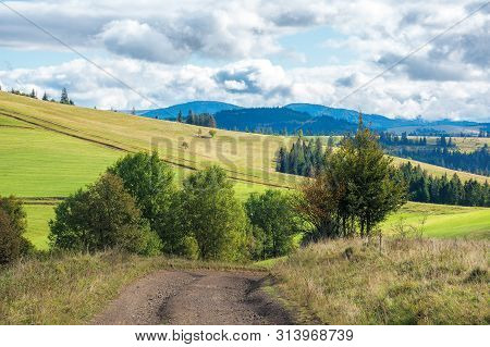 Beautiful Countryside In Early Autumn. Trees Along The Path Through Meadow On Hill. Sunny Weather Wi