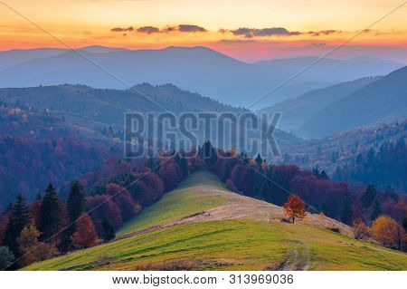 Rural Area In Mountains At Dusk. Beautiful Countryside Autumn Scenery. Path Down The Hill In To The