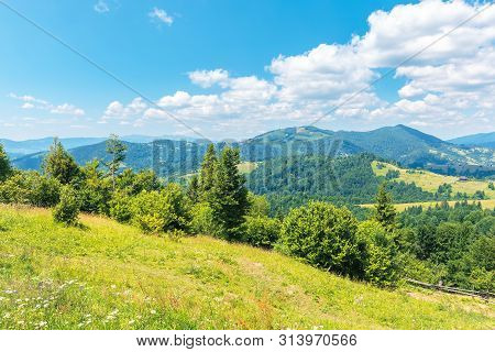 Wonderful Summer Afternoon In Mountains. Trees On The Hill In Green Foliage. Sunny Weather With Fluf