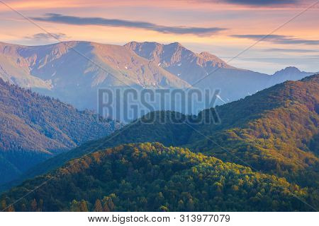 Fagaras Mountain Ridge At Dusk.  Forested Hills And High Peaks In Reddish Light. Amazing Scenery Of