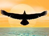 eagle before the sun at sea poster