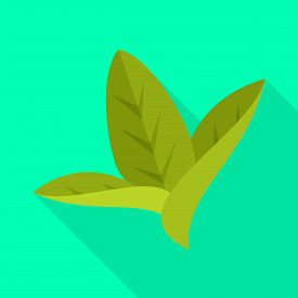 Isolated Object Of Leaf And Leaves Logo. Set Of Leaf And Botanical Stock Symbol For Web.