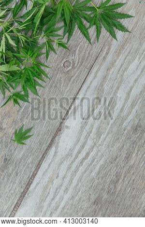 Frame With Cannabis Leaves. Background With Marijuana On Old Wooden Background With Copy Space.