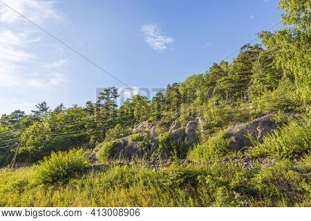 Gorgeous View Of Blue Sky Over Tops Of And Trees. Gorgeous Natural Backgrounds. Sweden.