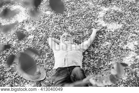 Concept Of Freedom. Happy Man Under Spring Sakura Blossom. Daydreaming. Happy Smiling Senior Man Loo