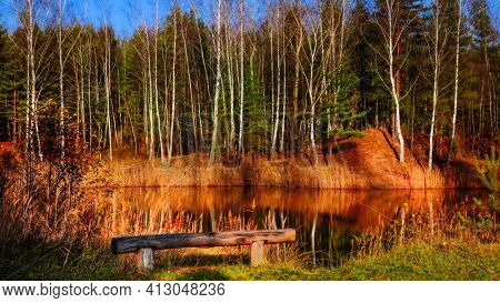 An empty park bench at the edge of the forest with view to the lake
