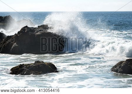 Bodega Bay Area Along Northern California's Rugged Coast, Sonoma County