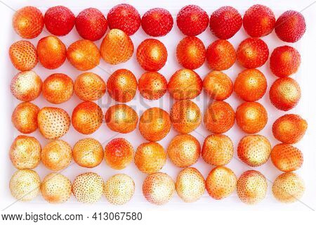 Fresh Strawberry On A White Background. Close Up Of A Strawberry.