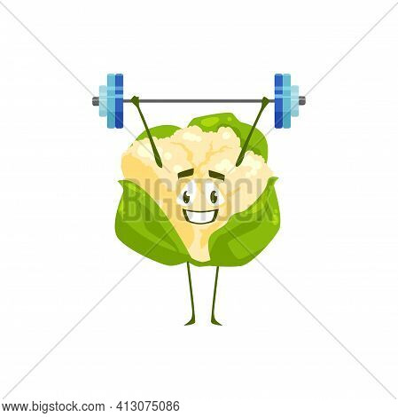 Cartoon Cauliflower Vegetable Workout With Barbell. Vector Funny Plant Sportsman Character Sport Exe