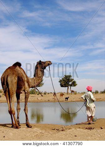 hindu men and his camel