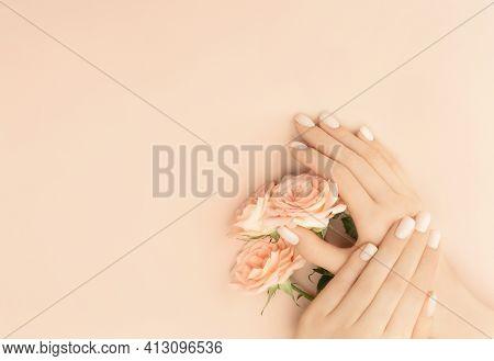 Female Hands Holding Tea Roses On Pastel Background For Decoration Design. Vintage Pink Gift Card. F
