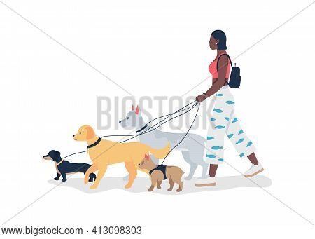 African American Girl Walking Dogs On Leashes Flat Color Vector Detailed Character