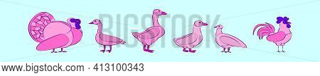 Set Of Fowl Animals Cartoon Icon Design Template With Various Models. Modern Vector Illustration Iso