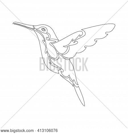 Hand-drawn Abstract Portrait Of A Hummingbird For Tattoo, Logo, Wall Decor, T-shirt Print Design Or